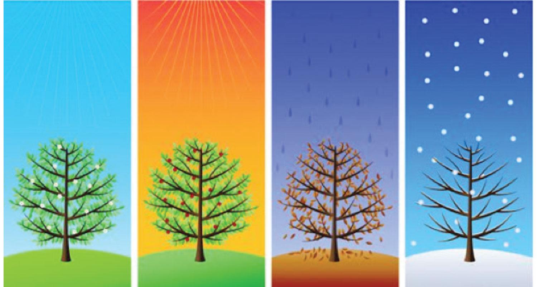 Seasonal Changeovers